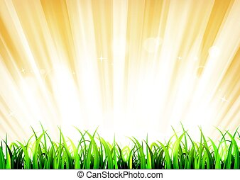 Summer Sunshine Background With Grass Leaves - Illustration...