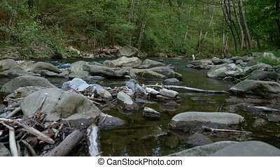 Limentra stream, close to the Chicon watermill in Pavana,...
