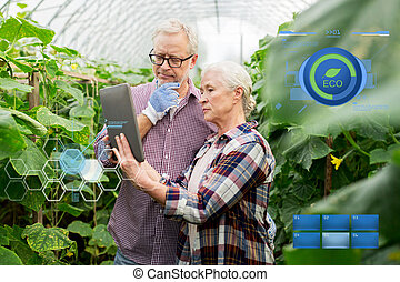 senior couple with tablet pc at farm greenhouse - organic...