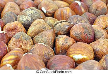 Several filbert nuts