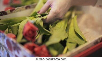Florist putting red flowers in a box with a plush toy -...
