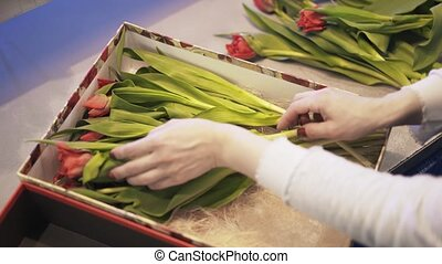 Florist putting red flowers in a box with a plush toy top...