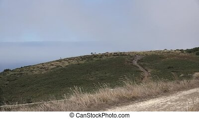 Windy Grass Hills And Haze