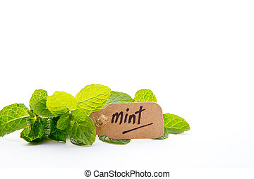 Fresh Mint with label on white background