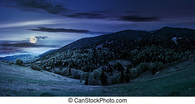 meadow with trees in mountains at night - mountain...