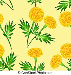 Yellow Marigold on Ivory Beige Background. Vector...
