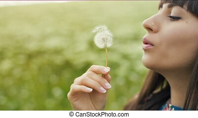 Woman Blow Dandelion - Woman blowing dandelion seeds at...