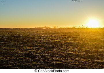 campo - Nascer do sol iluminando campo com leve névoa