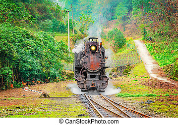 Steam narrow-gauge train. - Steam narrow-gauge locomotive...