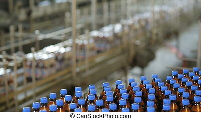 Beer production at the factory