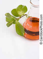 Biochemistry - Green leaves next to an erlenmeyer flask with...