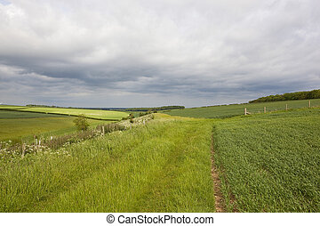 yorkshire wolds scenery in agricultural land with hills and...