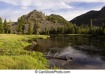Madison River Flows Through Yellowstone West Side Entrance -...