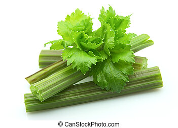 Celery closeup on a white background