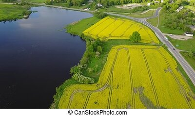 Rapeseed field yellow green lake Aerial view of countryside,...