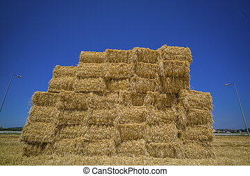 cereal bales of straw - bales of cereals after the harvest...