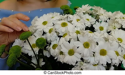 Beautiful, young woman enjoys a bouquet of flowers. White Camomiles. Love, offer of the hand and heart. Green background