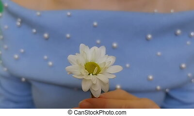 A white flower in the girl's hand. Chamomile