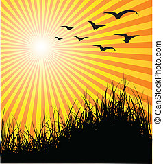 Summer vector background - grass, birds and sunset