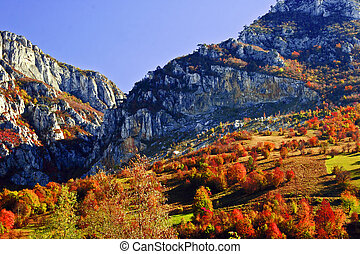Autumn - Cerna Mountains in the town Herculane. The end of...