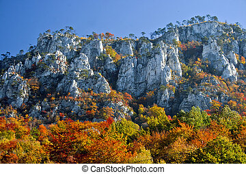 Autumn - Cerna Mountains in the town Herculane The end of...