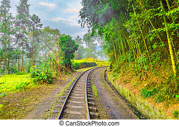 Steam narrow-gauge railway from Yuejin to Bagou. Jiayang...
