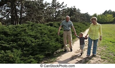 Toddler boy walking with his grandparents in park -...