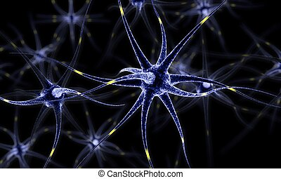 Neural network , Brain cells , Human nervous system ,...