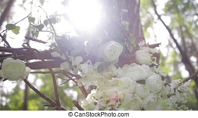 Lovely white bush roses. Ornamental white flowers on bright sun. Tender roses in garden.Beautiful roses with green leaves and thorns.Two buds of flowers of a white dog-rose close up. Beautiful bokeh and the suns rays.