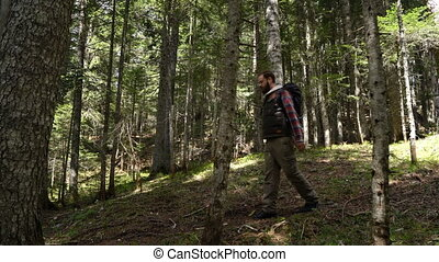 Traveler with a backpack walks through the forest
