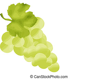 White grapes with green leaf on white background