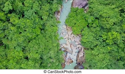 Drone Flies over River between Thick Tropical Jungle - drone...