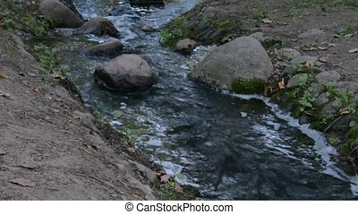 In the hollow among the stones a small stream flows - A...
