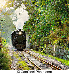 Steam narrow-gauge train moves from Bagou to Yuejin through...