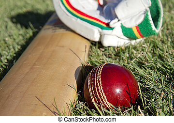 Cricket equipment. - Cricket ball, bat and gloves on the...