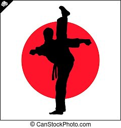 Martial arts. Karate fighter high kick - Fighting combat...