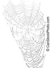 Spiderweb with waterdrops on white background - Spiderweb...