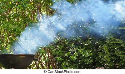 Lots of gray smoke from grill into lush foliage - Barbecue...