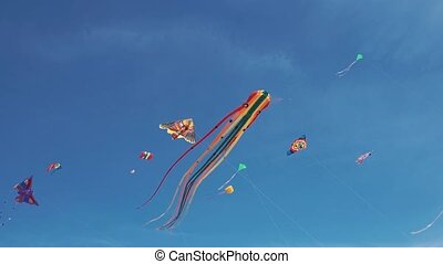 Many colourful kites hovering in blue sky and sunny day. Kite in form of octopus