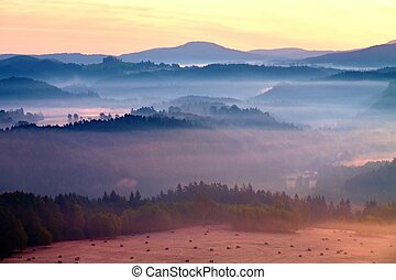 Misty dreamy landscape at begining of November. Colors of...