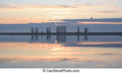 Seagulls fly around over calm water surface of lake or river...