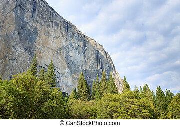 El Capitan rock from Yosemite National Park, California USA....
