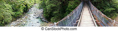 Wooden suspension bridge in the forest panorama - Panorama...