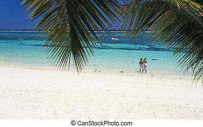 Trou aux biches beach Mauritius Island - Trou aux biches...