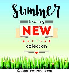 Summer new collection banner. Vintage style text poster with graphic elements, blue summer sky, green, lush grass, daisies and ladybugs. Template, mock-up online shopping, advertising actions, magazines and other.