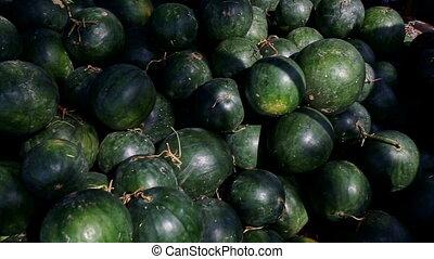 Closeup Big Watermelons Pile under Sunlight on Street Market...