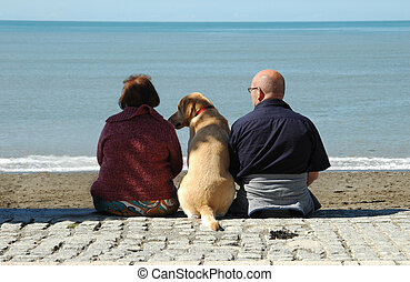 dog and owners - labrador flanked by owners on seafront in...