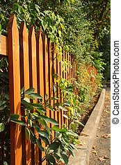 Wooden fence - Orange wooden fence with green leaves and...