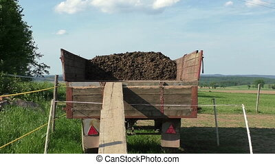 Horse manure in wagon on a horse farm