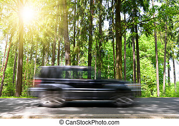 Motion blured car on road in forest.